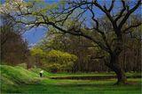 Пролетна приказка ; comments:27