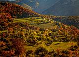 Есен в Борово ; comments:49