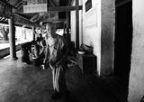 Southwest China  ,Xishuangbanna,Jinghong. ; comments:34