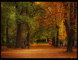 Есенна соната ; comments:30
