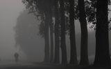 И след мъглата... пак мъгла :) ; comments:25