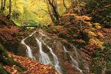 Екопътека - Под пръските на водопада ; comments:27