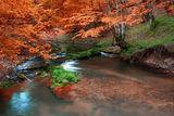 В палитрата на есента ; comments:30