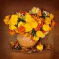 Есенно настроение.. ; comments:21