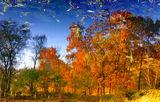 Есен в езерото ; comments:34