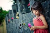 .....лятна вечер в стръкчета цветя... ; comments:52