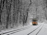 Още един завой до  спирка Вишнева ; comments:76