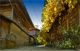 есен в Медвен ; Comments:25