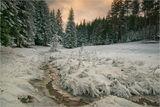 Зима в Родопите ; comments:54