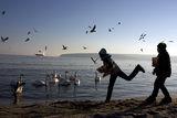 Ни през лято ни през зима край морето скука има :) ; comments:16