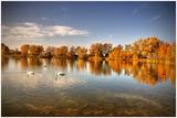 На езерото ; comments:41