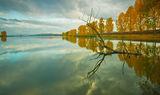 Огледалото на есента ; comments:53