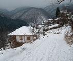 По зимната пътека на село Косово ; comments:13