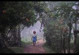 Утринна мараня, село Чамбакулам. Южна Иния ; comments:60