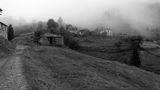 Пусто, влажно и мъгливо ; comments:56