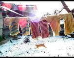 Натюрморт с вълнени чорапи ; comments:15