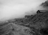 Мъгливо утро ; comments:74
