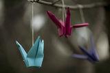 Оригами ; comments:8