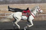 Кушия в Банкя 12.03.2011 ; comments:4