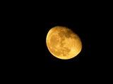 До луната и назад ; comments:11