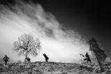 Петъчната суматоха край дървото на Гмудите. ; comments:51