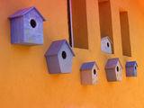 Къщички без птици ; comments:18