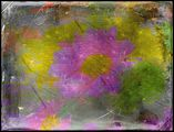 no name ( ID=1476107 ) ; comments:36