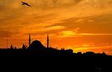 Истанбул ; comments:19