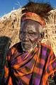 Клановият старейшина ; comments:49