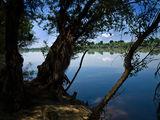 Диво край реката II ; comments:6