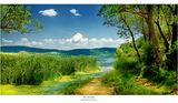 BG nature ; comments:25