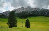 Prato Piazza, Dolomiti, Italia ; comments:21