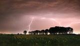 Слънца в бурята ; comments:30