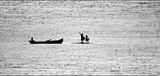 Феите на водата ; comments:43