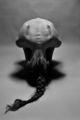 Ерата на скорпиона ; comments:16