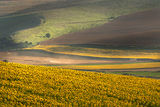 Дунавска равнина ; comments:48