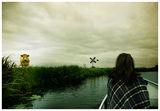 Етюд с крава, вятърна мелница и Таня... ; comments:5