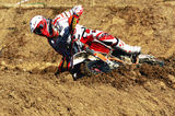 raduta mx1 ; comments:6