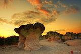 Каменните гъби ; comments:43