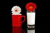 Етюд в червено и бяло ; comments:25