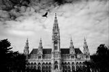 The Rathaus in Vienna ; comments:15