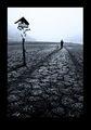 Dead End ; comments:14