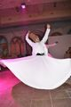Whirling dirvish ; comments:2