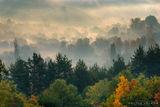 Утринни мъгли ; comments:52
