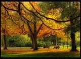 Среща с есента ; comments:30