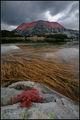 Есен на Муратовото езеро ; comments:82