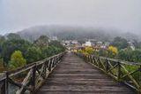 Обгърнат в мъгла ; Comments:19