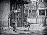 Старецът с кучето ; comments:55