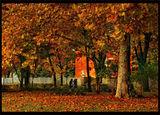 Из есенна София - градинката при Художествената академия ; comments:8