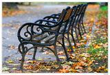 Изминала есен III ; comments:32